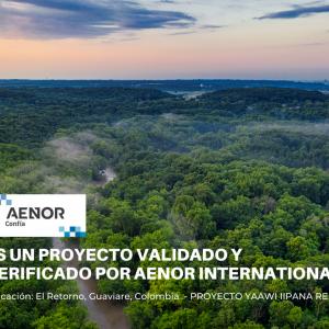 Compensación por impuesto al carbono - Proyecto YAAWI IIPANA REDD+